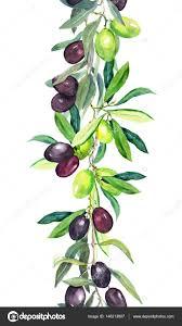 olive tree branches watercolor border stripe stock photo