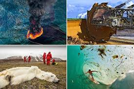 design by humans uk horrifying photos show damage done to earth by humans and over