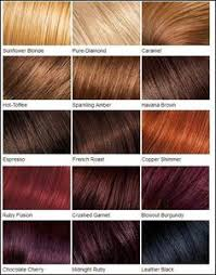 mahogany hair color chart shades of red hair chart google search hair color names instead