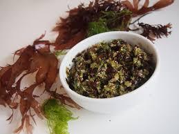 cuisiner les algues tartare d algues fraîches paroles de diet