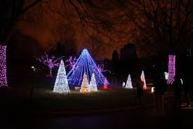 oregon zoo lights 2017 5 not to miss holiday light shows in portland oregon