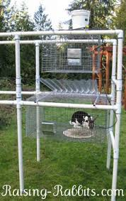 Build Your Own Rabbit Hutch Plans Rabbit Hutch With Automatic Collector Rabbit Hutch Plans