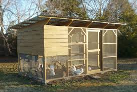 Building Backyard Chicken Coop Chicken Coop To Build Backyard Chicken Coop Designs Chicken