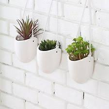 set of 2 small egg shaped brown ceramic hanging succulent planter