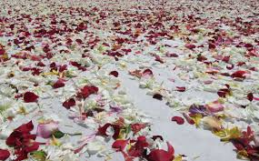 memorial flowers armenian genocide memorial flowers to be recycled for card