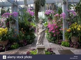 Botanic Garden Bronx by Orchid Show In Enid A Haupt Conservatory At New York Botanical
