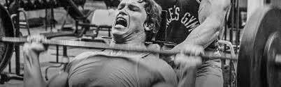 arnold schwarzenegger u0027s blueprint to cut training