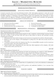 Account Executive Resume Resume Samples For Sales And Marketing Jobs