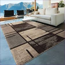 Pier 1 Area Rugs Furniture Magnificent Stain Resistant Area Rugs Area Rugs Direct