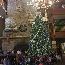 we had a howling great time great wolf lodge recap