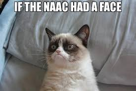 Grumpy Face Meme - if the naac had a face meme grumpy cat bed 65878 page 23