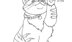 Coloriage Bonnet Awesome 49 Best Coloriages Animaux Domestiques