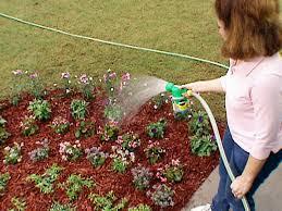 Gardening Pictures Diy Garden Projects Vegetable Gardening Raised Beds Growing