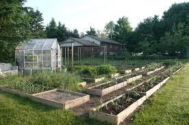 a new veggie garden nickys garden