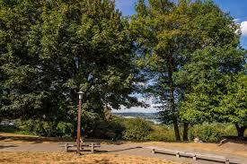 Solstice Park West Seattle by Boren Park Parks Seattle Gov
