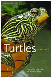 turtles of alabama university of alabama press