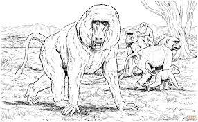 baboon family coloring page free printable coloring pages