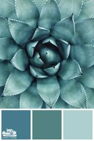 40 best color palettes by amsberry u0027s painting images on pinterest