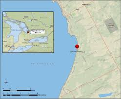 Lake Michigan Beaches Map by Wymbolwood Beach Ontario Great Lakes Phragmites Collaborative