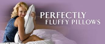 Pacific Coast Preferred Comfort Pillows Pacific Coast Bedding
