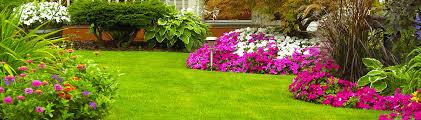 Grass Roots Landscaping by Grassroots Landscape Maintenance Llc West Linn Or Us 97068
