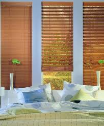 Blinds Rockhampton Luxaflex Venetian Blinds Capricorn Screens Capricorn Screens