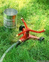 gardening tips 991 best gardening tips u0026 ideas images on pinterest martha