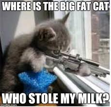 Big Milk Meme - cats with guns imgflip