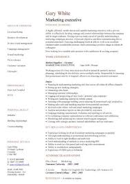 executive resume template marketing executive cv sle description sales caigns