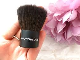 youngblood purely the basics mineral cosmetics kit medium