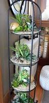 26 mini indoor garden ideas to green your home amazing diy