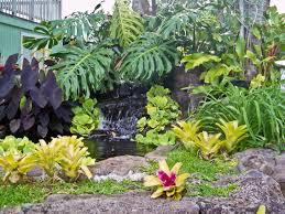 Tropical Plants Perth Tropical Landscaping Garden Ideas For Home Yard Designtilestone Com