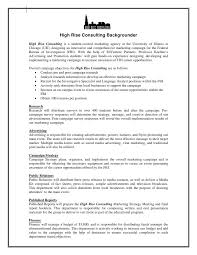 professional report template word 2010 manager billybullock us