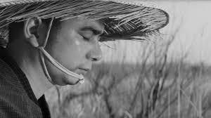 Zatoichi Blind Swordsman Janus Films U2014 The Tale Of Zatoichi