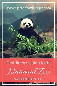 Zoo Lights Tacoma Wa by Best 25 Washington Zoo Ideas On Pinterest Dc Zoo Washing Dc