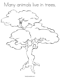 many animals live in trees coloring page twisty noodle