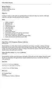 sle professional resume template writeace custom writing company academic article writing