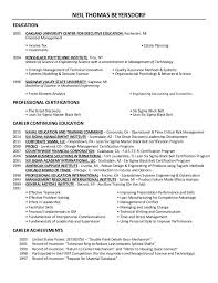 lead software developer resume sample professional resume writing