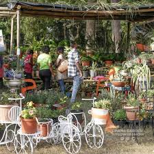 garden and flower show ghana garden and flower show 5th edition comes to an end