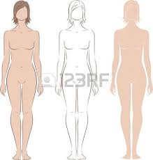 illustration of women s figure front back side views silhouettes