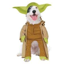Target Dog Halloween Costume 98 Galactic Costuming Images Star Wars