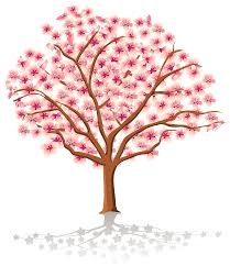 transparent spring tree png clipart gallery yopriceville high