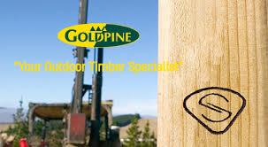 Strongbuilt Sheds Goldpine by Strongbuilt Sheds Barns U0026 Stables 0199 U2013 New Zealand Free