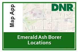 emerald ash borer map dnr indiana emerald ash borer eab quarantine map