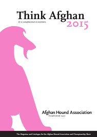 afghan hound owner reviews magazine 2015 by ahaonline issuu