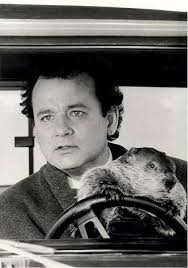 Bill Murray Groundhog Day Meme - great film promo photo art of bill murray for groundhog day the