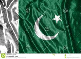 Oakistan Flag Pakistan Flag Flag On Background Stock Photo Image 69193672