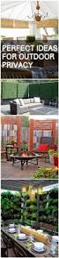 Outdoor Privacy Screens For Backyards Best 25 Backyard Privacy Ideas On Pinterest Patio Privacy Deck
