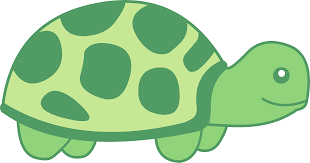 color clipart turtle pencil and in color color clipart turtle
