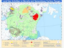 Dove Migration Map Caribou Hunting Information Page
